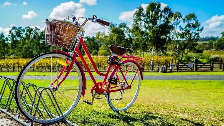 公園にある自転車
