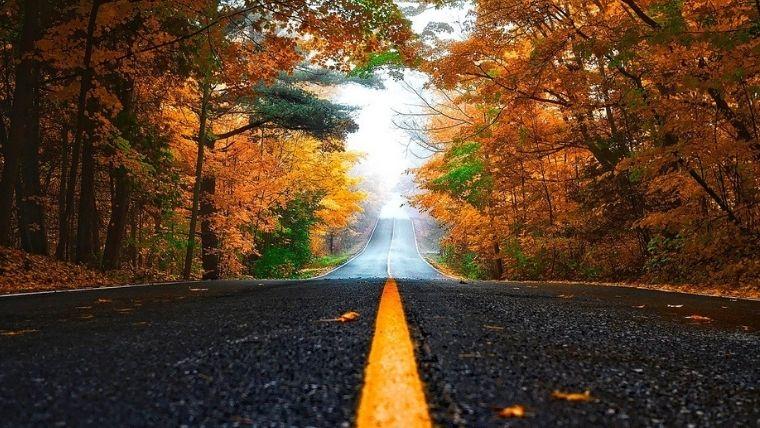 秋ドライブ