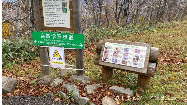 自然登山道