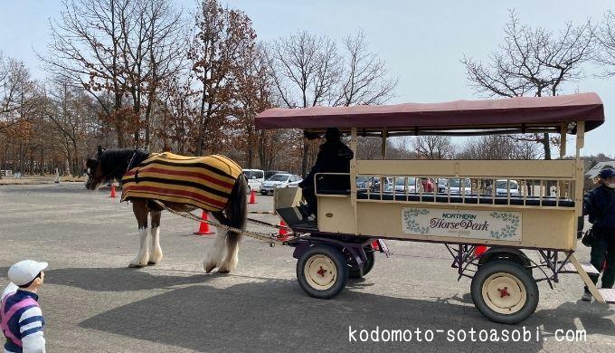 ノーザンホースパーク観光馬車